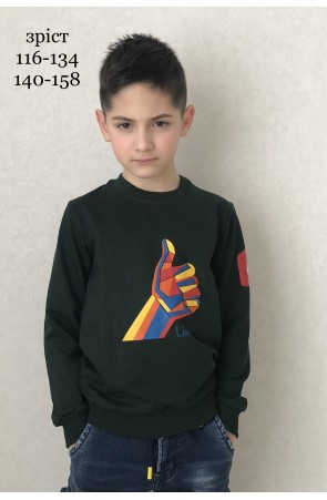 Свитшот для мальчиков модель 1116/1 цвет темно-зелёный